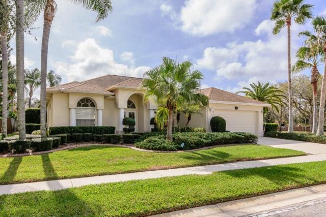 1001 Arlinbrook Drive, Trinity, FL 34655 (MLS #W7638072) :: Griffin Group