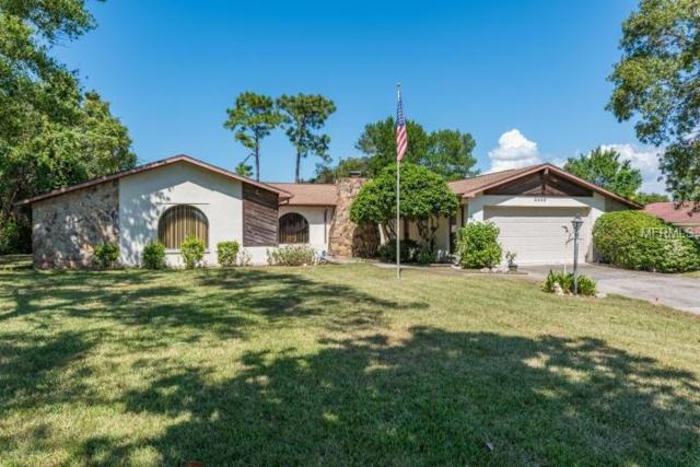8448 Delaware Drive, Weeki Wachee, FL 34607 (MLS #W7638093) :: Griffin Group