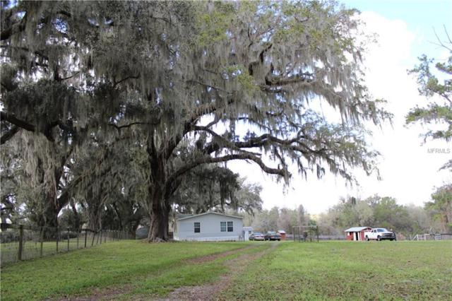 12446 County Highway 484, Belleview, FL 34420 (MLS #W7638122) :: Godwin Realty Group