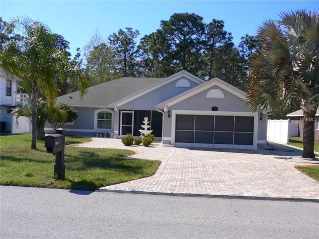 3219 Greynolds Avenue, Spring Hill, FL 34608 (MLS #W7638134) :: Jeff Borham & Associates at Keller Williams Realty