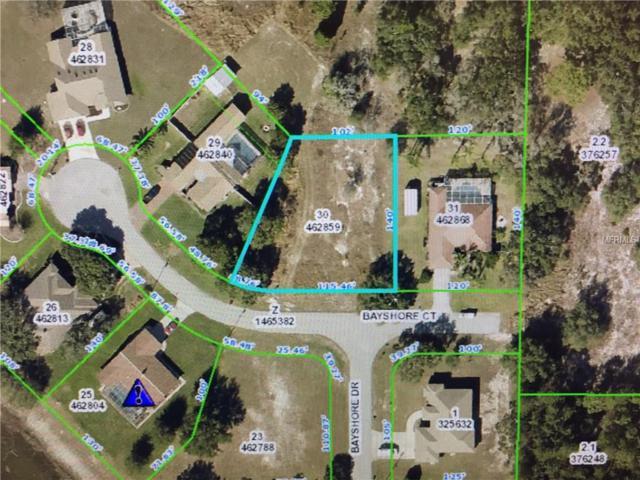3364 Bayshore Court, Spring Hill, FL 34608 (MLS #W7638268) :: Dalton Wade Real Estate Group