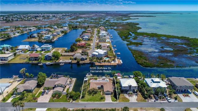 3228 Gulfview Drive, Hernando Beach, FL 34607 (MLS #W7638390) :: Griffin Group