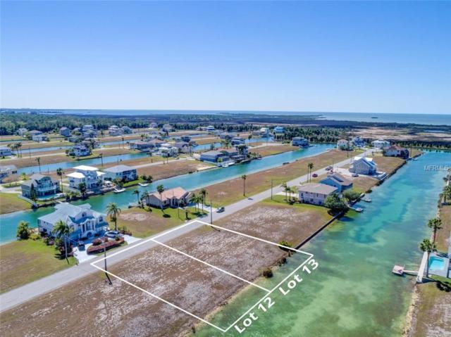 LOT 13 Sheephead Drive, Hernando Beach, FL 34607 (MLS #W7638410) :: Griffin Group