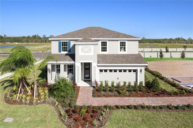 11238 Leland Groves Drive, Riverview, FL 33579 (MLS #W7638552) :: The Duncan Duo Team