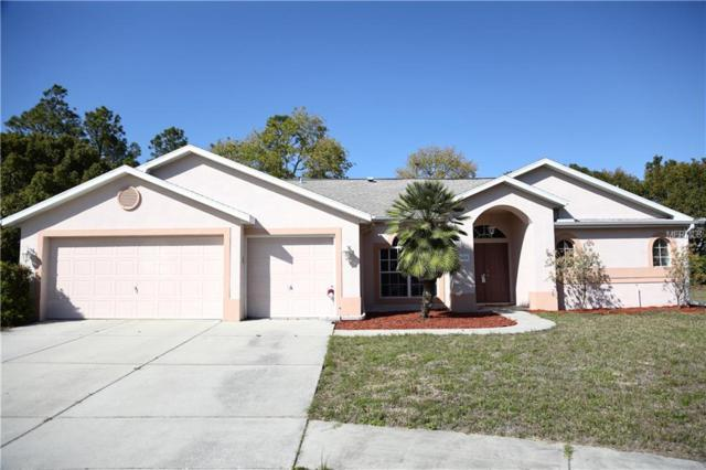 14528 Pimberton Drive, Hudson, FL 34667 (MLS #W7638607) :: Griffin Group