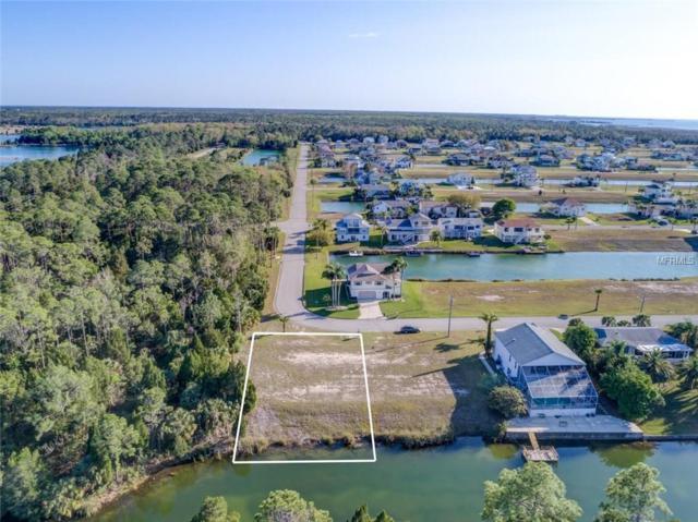 LOT 1 Amberjack Drive, Hernando Beach, FL 34607 (MLS #W7638660) :: Griffin Group