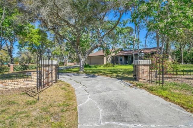 7307 Jomel Drive, Weeki Wachee, FL 34607 (MLS #W7638662) :: Griffin Group