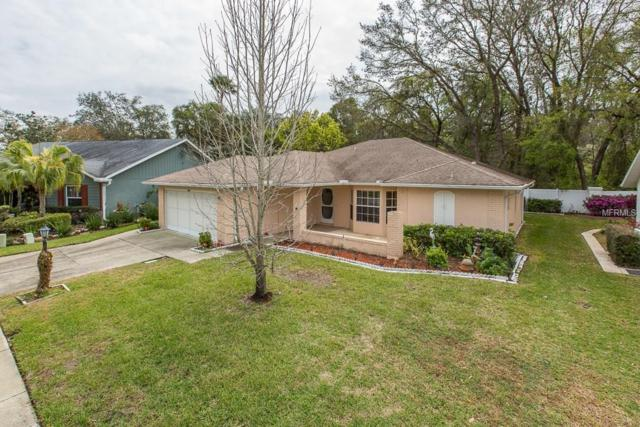 4606 Sandpointe Drive, New Port Richey, FL 34655 (MLS #W7638796) :: The Duncan Duo Team
