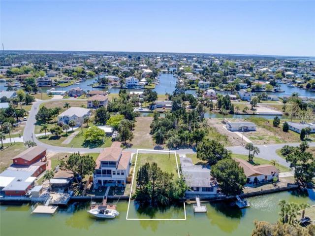 LOT 3 Cedarbrook Lane, Hernando Beach, FL 34607 (MLS #W7638799) :: The Duncan Duo Team