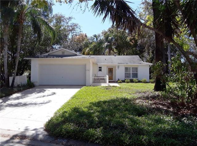 10566 Calico Loop, Port Richey, FL 34668 (MLS #W7638906) :: Jeff Borham & Associates at Keller Williams Realty