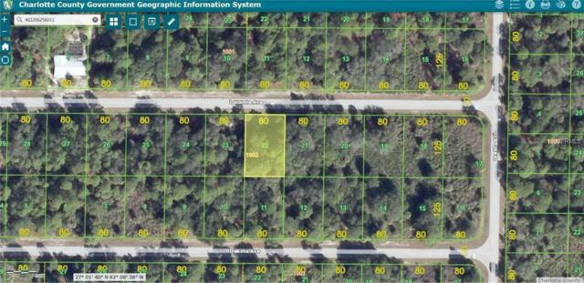 18381 Laramie Avenue, Port Charlotte, FL 33954 (MLS #W7638913) :: Griffin Group
