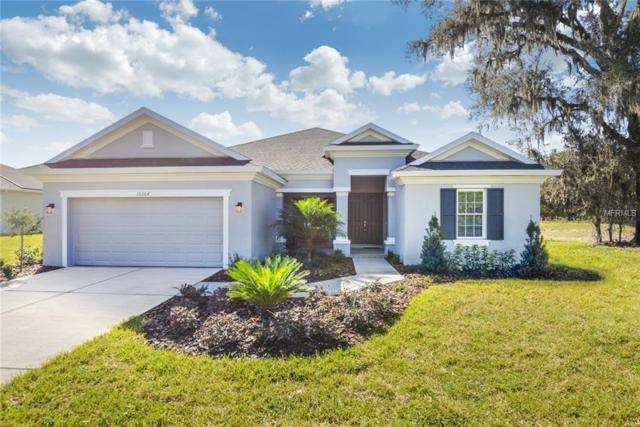 17807 Nokota Avenue, Hudson, FL 34667 (MLS #W7638929) :: Griffin Group