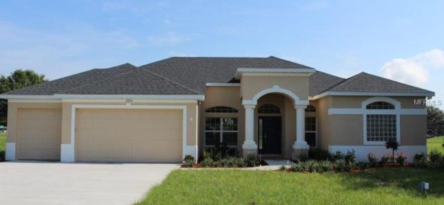 17855 Nokota Avenue, Hudson, FL 34667 (MLS #W7638932) :: Griffin Group
