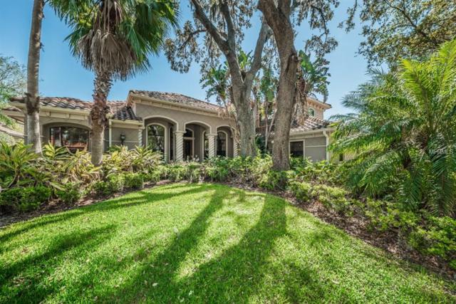 10610 Pontofino Circle, Trinity, FL 34655 (MLS #W7638945) :: The Lockhart Team