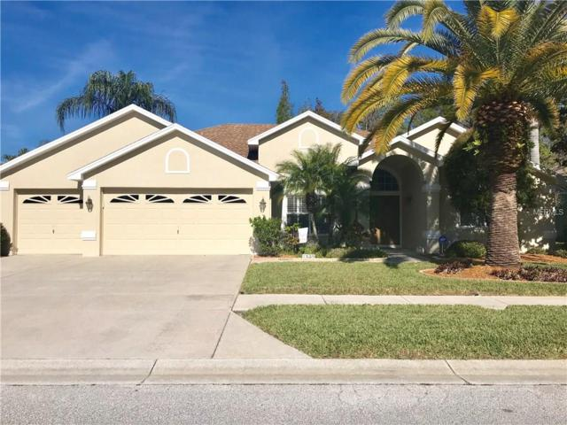 1339 Wild Pine Court, Trinity, FL 34655 (MLS #W7638978) :: Jeff Borham & Associates at Keller Williams Realty