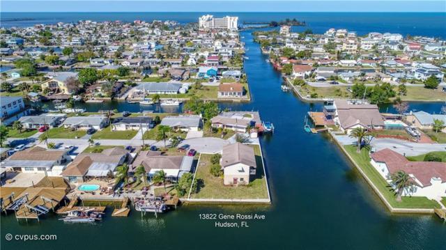 13822 Gene Rossi Avenue, Hudson, FL 34667 (MLS #W7639017) :: Jeff Borham & Associates at Keller Williams Realty