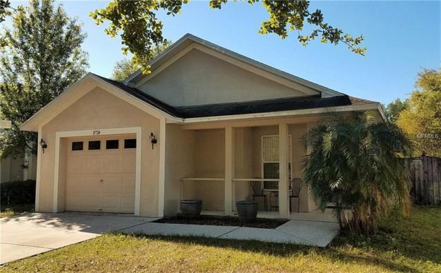 11724 Mango Cross Court, Seffner, FL 33584 (MLS #W7639023) :: KELLER WILLIAMS CLASSIC VI