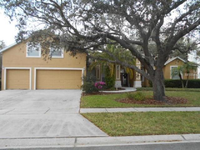 Valrico, FL 33596 :: Team Bohannon Keller Williams, Tampa Properties