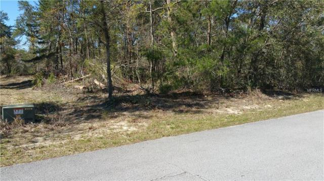 3 Tall Marigolds Court, Homosassa, FL 34446 (MLS #W7639179) :: The Duncan Duo Team