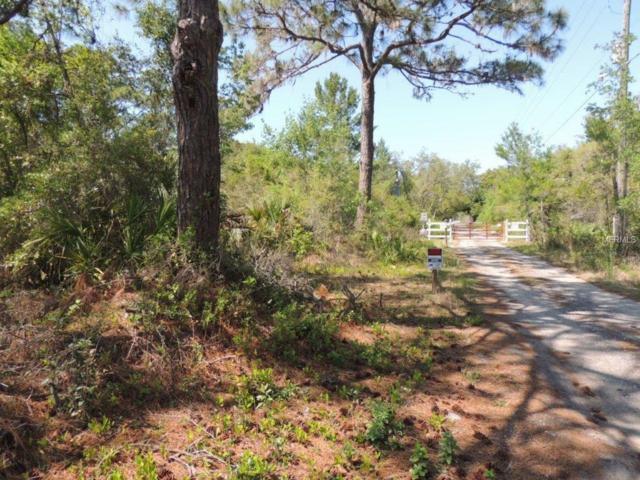 13211 Secret Lane, Hudson, FL 34667 (MLS #W7639510) :: The Lockhart Team