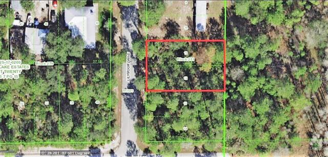000 Lilymoore Drive, New Port Richey, FL 34654 (MLS #W7639542) :: G World Properties