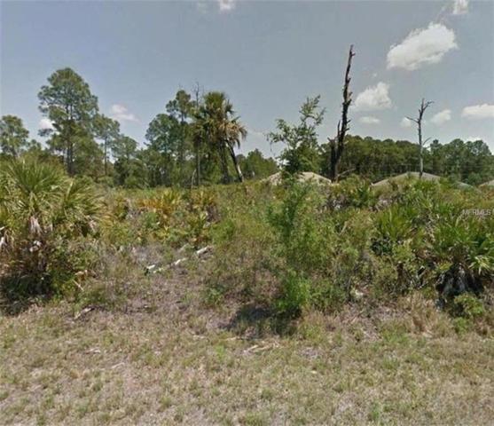 Fanning Street, North Port, FL 34288 (MLS #W7639544) :: Team Pepka
