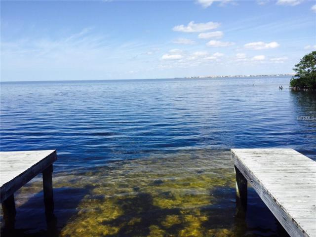 Gulfview Drive, Holiday, FL 34691 (MLS #W7639692) :: The Duncan Duo Team