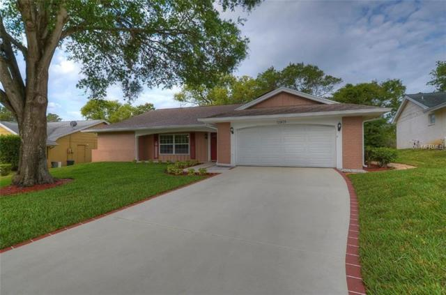 12805 Candlewood Way, Hudson, FL 34667 (MLS #W7800005) :: The Duncan Duo Team