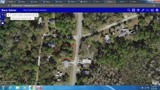 Lake Drive, New Port Richey, FL 34654 (MLS #W7800011) :: G World Properties