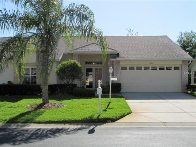 1206 Sweet Jasmine Drive, Trinity, FL 34655 (MLS #W7800235) :: Delgado Home Team at Keller Williams