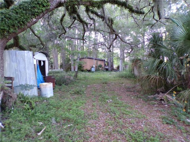 8622 Cameo Drive, New Port Richey, FL 34654 (MLS #W7800278) :: The Duncan Duo Team