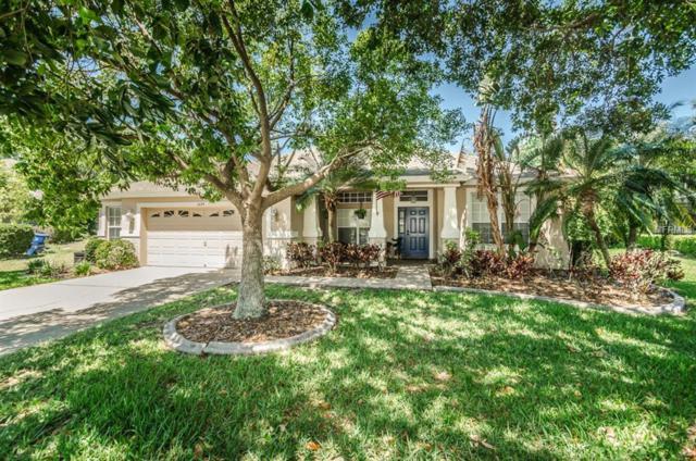 1624 Tawnyberry Court, Trinity, FL 34655 (MLS #W7800288) :: Delgado Home Team at Keller Williams