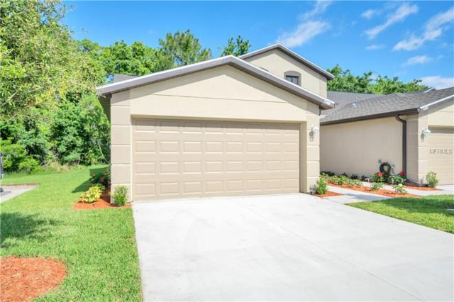 11215 Port Douglas Drive, New Port Richey, FL 34654 (MLS #W7800295) :: Griffin Group