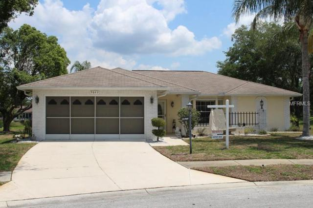 9845 Mcgregor Court, New Port Richey, FL 34655 (MLS #W7800315) :: Griffin Group