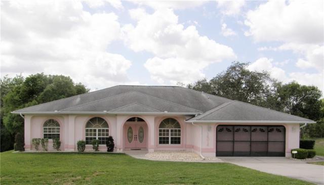 14016 Bruni Drive, Spring Hill, FL 34609 (MLS #W7800324) :: Dalton Wade Real Estate Group