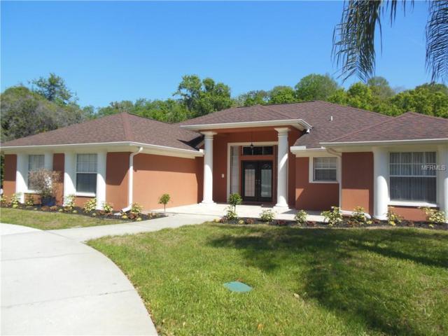 12206 Quail Ridge Drive, Spring Hill, FL 34610 (MLS #W7800345) :: Dalton Wade Real Estate Group
