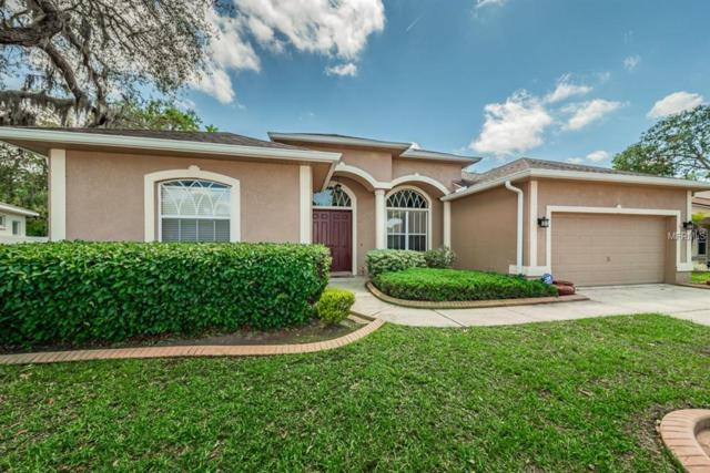 12432 Bighorn Court, New Port Richey, FL 34654 (MLS #W7800348) :: Team Virgadamo