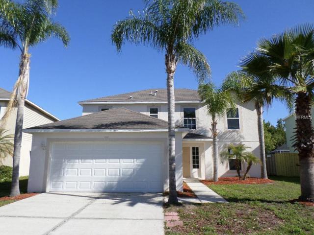 31537 Earn Drive, Wesley Chapel, FL 33545 (MLS #W7800436) :: Cartwright Realty