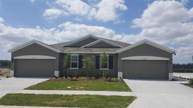 10519 Heron Hideaway Loop, Land O Lakes, FL 34638 (MLS #W7800459) :: The Duncan Duo Team