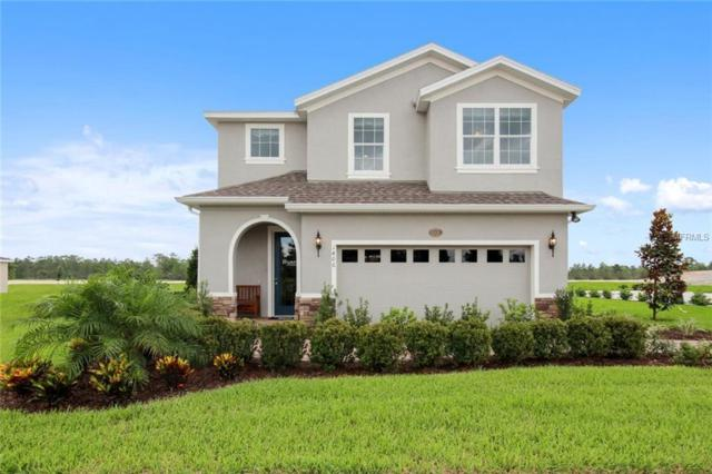 10320 Hawks Landing Drive, Land O Lakes, FL 34638 (MLS #W7800460) :: The Duncan Duo Team