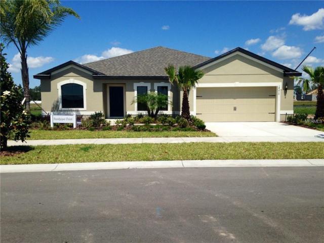 11610 Lake Lucaya Drive, Riverview, FL 33579 (MLS #W7800517) :: The Duncan Duo Team
