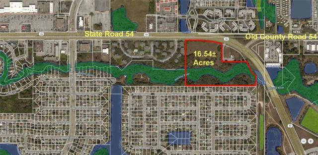 State Road 54, New Port Richey, FL 34653 (MLS #W7800540) :: RE/MAX Realtec Group