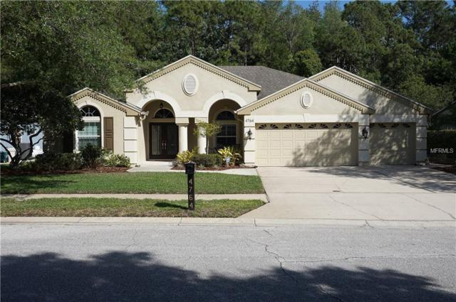 4764 Kylemore Court, Palm Harbor, FL 34685 (MLS #W7800558) :: Chenault Group