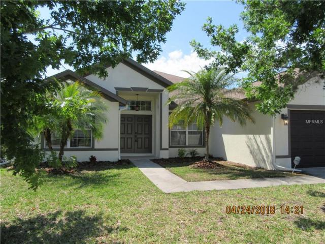 4723 Pointe O Woods Drive, Wesley Chapel, FL 33543 (MLS #W7800565) :: Griffin Group