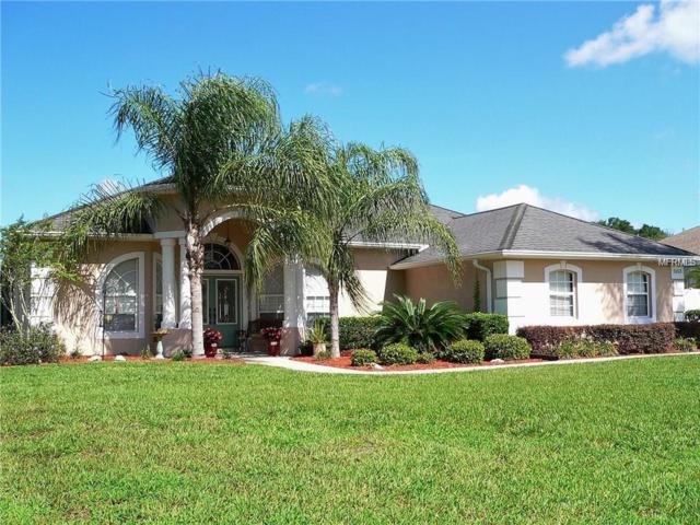 2653 Shipston Avenue, New Port Richey, FL 34655 (MLS #W7800712) :: The Duncan Duo Team