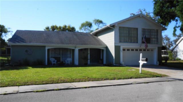 8505 Mill Creek Lane, Hudson, FL 34667 (MLS #W7800868) :: The Lockhart Team