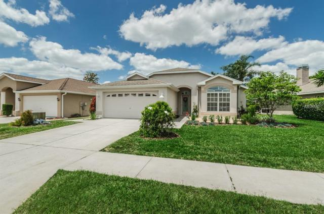 7621 Emery Drive, New Port Richey, FL 34654 (MLS #W7800936) :: RE/MAX CHAMPIONS