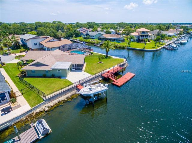 4283 Perry Place, New Port Richey, FL 34652 (MLS #W7801040) :: The Duncan Duo Team