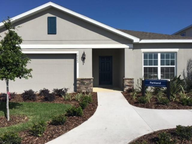 18628 Hunters Meadow Walk, Land O Lakes, FL 34638 (MLS #W7801183) :: The Duncan Duo Team