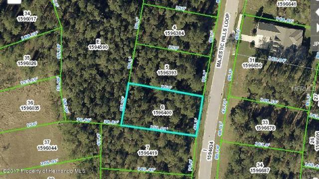 4835 Majestic Hills Loop, Brooksville, FL 34601 (MLS #W7801291) :: The Price Group